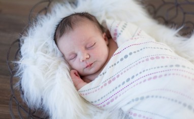 newborn photography toronto award winning